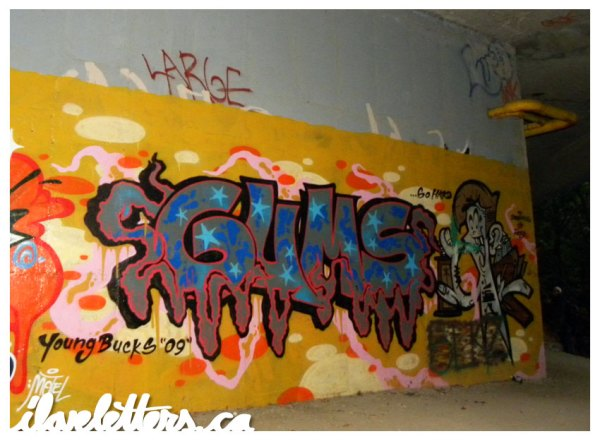 GUMS WALL