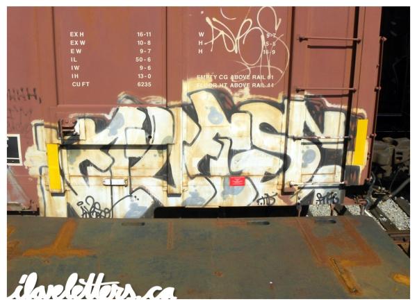 AVES FREIGHT GRAFFITI