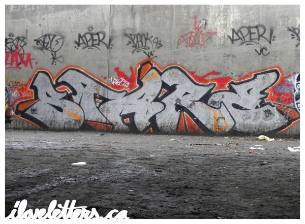 STARE WALL MONTREAL GRAFFITI
