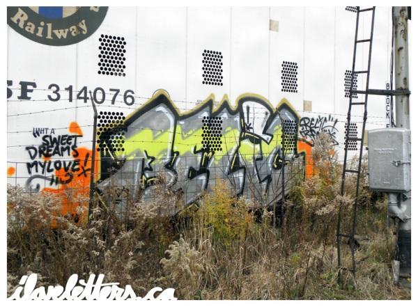 relic_Freight_Train_Graffiti